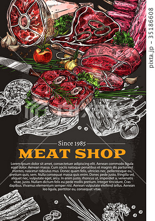 Vector poster of butchery shop meat product sketch 35186608