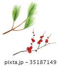 枝 松 梅のイラスト 35187149