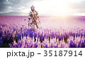 Military robot, cyborg with gun in lavender field 35187914