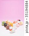 戌 犬 戌年の写真 35194884