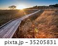 秋の美ヶ原高原 夕陽を浴びた木道 なびく草原 35205831