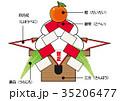 正月 新年 鏡餅のイラスト 35206477