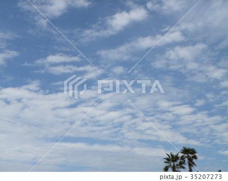 秋の検見川浜の青空と白い雲 35207273