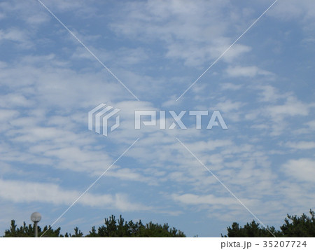 秋の検見川浜の青空と白い雲 35207724