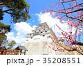 唐津城と梅 35208551