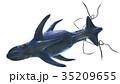 海のモンスター サメもどき 上から 白バック 素材 35209655