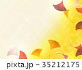 イチョウ 秋 紅葉のイラスト 35212175