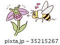 オフリス・ボンビリフロラとハチ 35215267