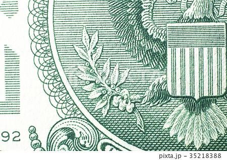 アメリカ 1ドル札のオリーブ(13の葉と実) 35218388