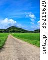 水田 田んぼ 田舎道の写真 35218629