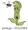 食虫植物のイラスト 35222663