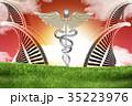 遺伝子 DNA 研究のイラスト 35223976