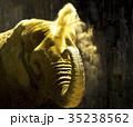 アフリカゾウ 35238562