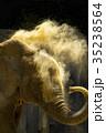 アフリカゾウ 35238564