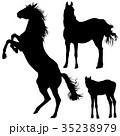 馬 人影 影のイラスト 35238979