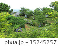 野見金公園 紫陽花 初夏の写真 35245257