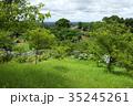 野見金公園 紫陽花 初夏の写真 35245261