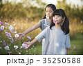 어린이,코스모스 35250588
