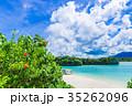 川平湾 石垣島 海の写真 35262096