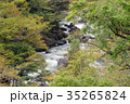 奥多摩・日原川 35265824