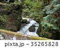 奥多摩・海沢林道の石橋から見る海沢川(1) 35265828