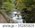 奥多摩・海沢林道の石橋から見る海沢川(2) 35265829