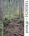 奥多摩・海沢のハイキングコース 35265831