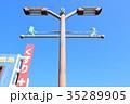 薩摩川内市の個性的な街灯 35289905