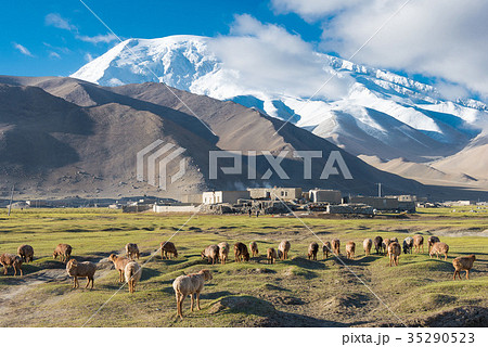 カラクリ湖から見えるムスタグアタ山(7546m) 中国・新疆ウイグル自治区クズルス・キルギス自治州 35290523