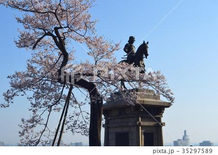 青葉城址の桜と伊達政宗騎馬像 35297589