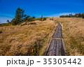 美ヶ原高原 木道 散策の写真 35305442
