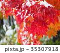 紅葉と初雪 35307918