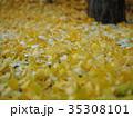イチョウの落ち葉と初雪 35308101