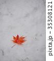 真っ赤なモミジの葉と初雪 35308121