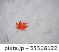 真っ赤なモミジの葉と初雪 35308122
