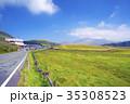 草千里ヶ浜から阿蘇山を望む 35308523