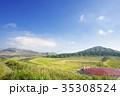 草千里展望所から阿蘇山・烏帽子岳を望む 35308524