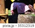 オランウータンの遊び 35312319