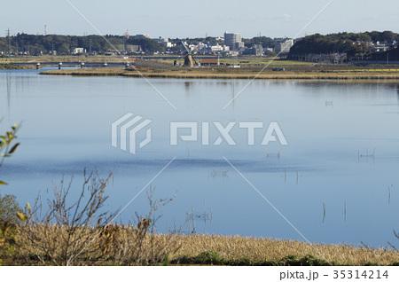 印旛沼 35314214