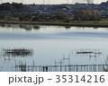 印旛沼 湖沼 沼の写真 35314216
