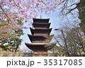 東寺 国宝 五重塔の写真 35317085