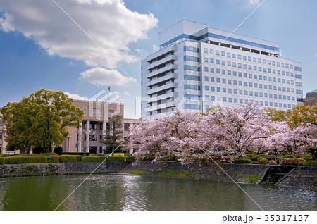 桜咲く佐賀県庁 35317137