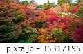 東福寺 紅葉 京都の写真 35317195