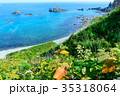 北海道 積丹 岬の写真 35318064