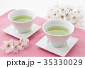 染井吉野と緑茶桜茶 35330029