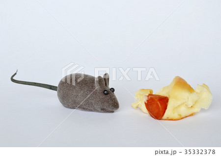 mouse toy and sausage bread on white backgroundの写真素材 [35332378] - PIXTA