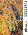 【宮城県】鳴子峡の紅葉 35333601