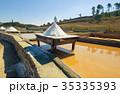 Production of Salt by Evaporation Saline 35335393