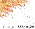 秋 紅葉 葉のイラスト 35340129