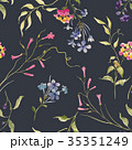 ベクター 植物 花のイラスト 35351249
